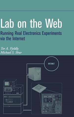 Lab on the Web