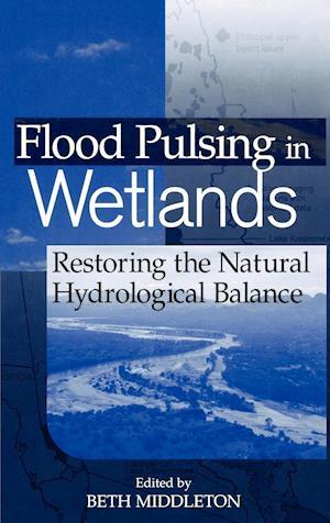 Flood Pulsing in Wetlands