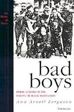 Bad Boys (Law Meaning and Violence Paperback)