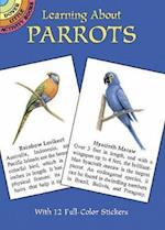 Learning about Parrots (Learning about Books Dover)