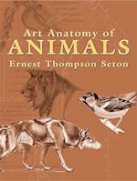 Art Anatomy of Animals (Dover Books on Art Instruction)