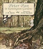 Peter Pan in Kensington Gardens af Arthur Rackham, J M Barrie