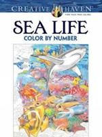 Creative Haven Sea Life Color by Number Coloring Book af George Toufexis