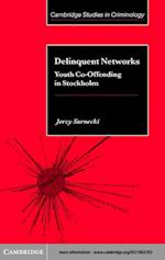 Delinquent Networks (Cambridge Studies in Criminology)