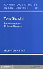 Tone Sandhi (Cambridge Studies in Linguistics)