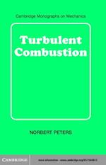 Turbulent Combustion af Peters