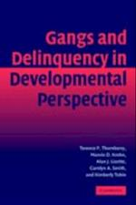 Gangs and Delinquency in Developmental Perspective (Cambridge Studies in Criminology)