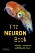 NEURON Book
