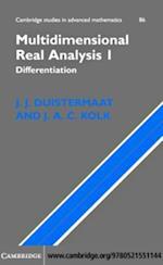 Multidimensional Real Analysis I (CAMBRIDGE STUDIES IN ADVANCED MATHEMATICS)