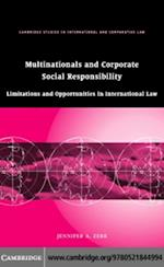 Multinationals and Corporate Social Responsibility (Cambridge Studies in International And Comparative Law)