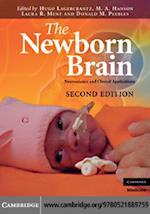 Newborn Brain