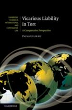 Vicarious Liability in Tort (Cambridge Studies in International And Comparative Law)