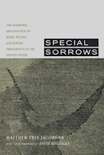 Special Sorrows