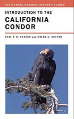 Introduction to the California Condor (California Natural History Guides Paperback, nr. 81)
