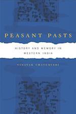 Peasant Pasts af Vinayak Chaturvedi