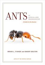 Ants of Africa and Madagascar af Barry Bolton, Brian L. Fisher