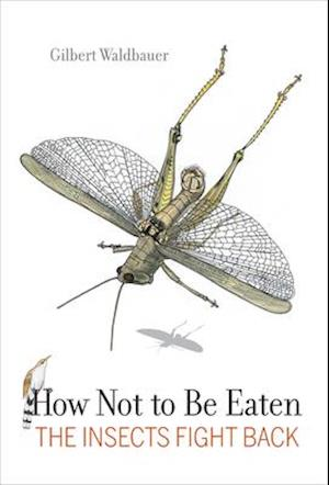How Not to Be Eaten