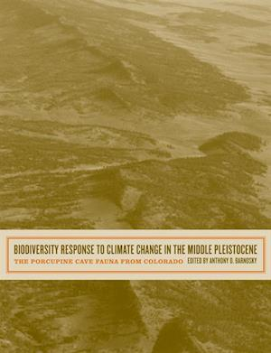 Biodiversity Response to Climate Change in the Middle Pleistocene