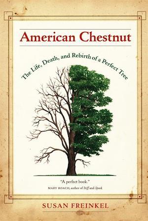 American Chestnut af Susan Freinkel