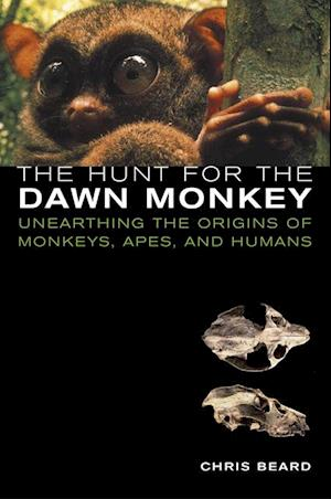 Hunt for the Dawn Monkey af Christopher Beard