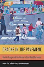 Cracks in the Pavement af Martin Sanchez-Jankowski