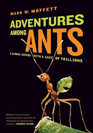 Adventures among Ants af Mark W. Moffett