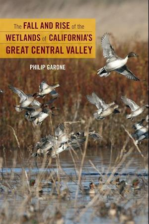 Fall and Rise of the Wetlands of California's Great Central Valley