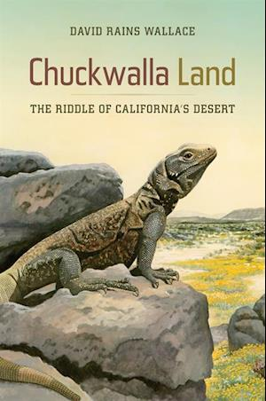 Chuckwalla Land af David Rains Wallace
