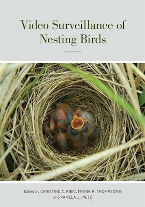 Video Surveillance of Nesting Birds