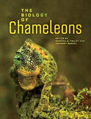 Biology of Chameleons