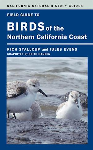Field Guide to Birds of the Northern California Coast af Jules Evens, Rich Stallcup