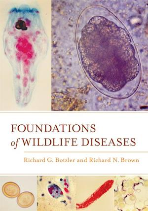 Foundations of Wildlife Diseases af Richard N. Brown, Richard G. Botzler