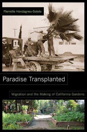 Paradise Transplanted af Pierrette Hondagneu-Sotelo