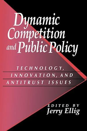 Dynamic Competition and Public Policy