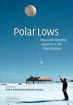 Polar Lows af Erik A Rasmussen, John Turner