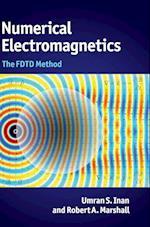 Numerical Electromagnetics