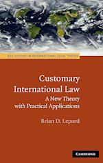 Customary International Law (Asil Studies in International Legal Theory)