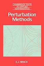 Perturbation Methods (Cambridge Texts in Applied Mathematics, nr. 6)