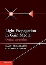 Light Propagation in Gain Media