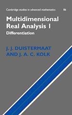 Multidimensional Real Analysis I (CAMBRIDGE STUDIES IN ADVANCED MATHEMATICS, nr. 86)