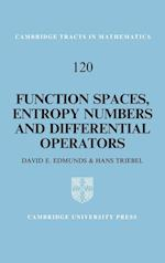 Function Spaces, Entropy Numbers, Differential Operators (CAMBRIDGE TRACTS IN MATHEMATICS, nr. 120)