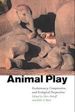 Animal Play af Marc Bekoff, John A Byers