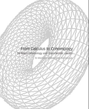 From Calculus to Cohomology