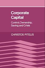 Corporate Capital af Christos Pitelis