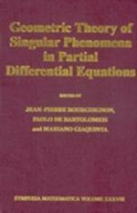 Geometric Theory of Singular Phenomena in Partial Differential Equations (Symposia Mathematica, nr. 38)