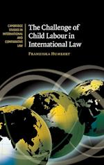 The Challenge of Child Labour in International Law (Cambridge Studies in International And Comparative Law, nr. 64)