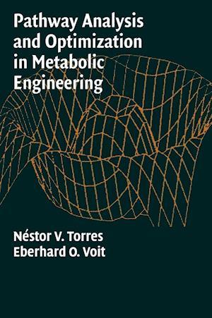 Pathway Analysis and Optimization in Metabolic Engineering