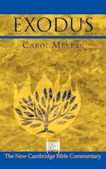 Exodus (New Cambridge Bible Commentary)