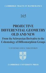 Projective Differential Geometry Old and New (CAMBRIDGE TRACTS IN MATHEMATICS, nr. 165)