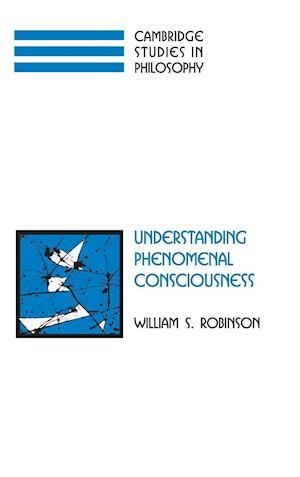 Understanding Phenomenal Consciousness